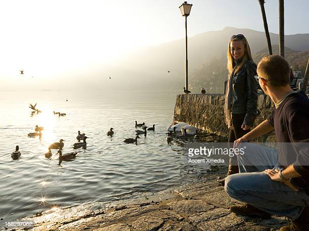 couple descend on stone walkway to lake edge,birds - ascona stock pictures, royalty-free photos & images
