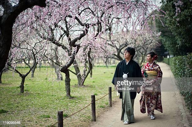 couple enjoying cherry blossoms - präfektur okayama stock-fotos und bilder