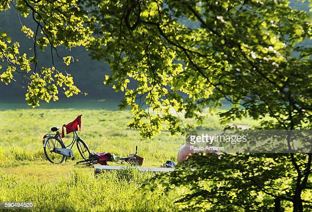 a couple enjoying during the summer time - gelderland stock pictures, royalty-free photos & images