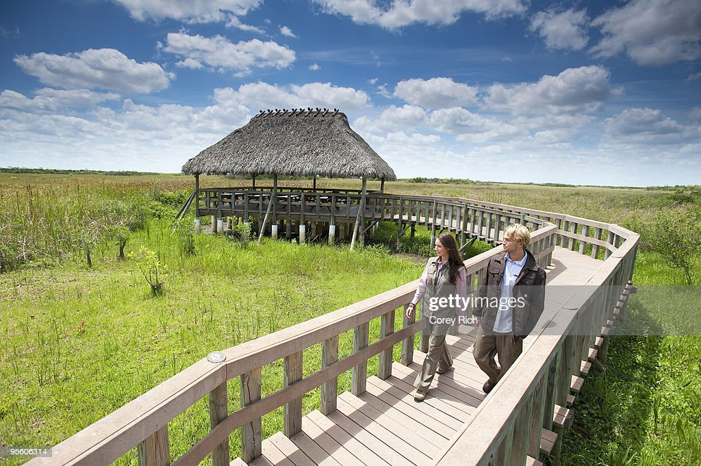 A couple enjoys a stroll along a wooden walkway in the Everglades National Park, Florida. : Stock Photo
