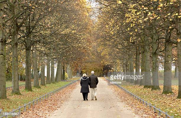 couple fall walk - avenue stock pictures, royalty-free photos & images