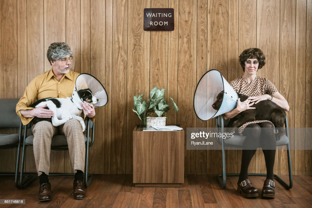 Couple Flirting at Veterinarian With Their Dogs : Stock Photo