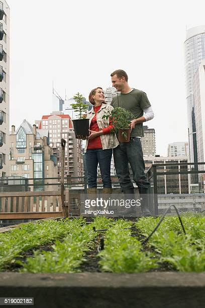 Couple gardening on roof