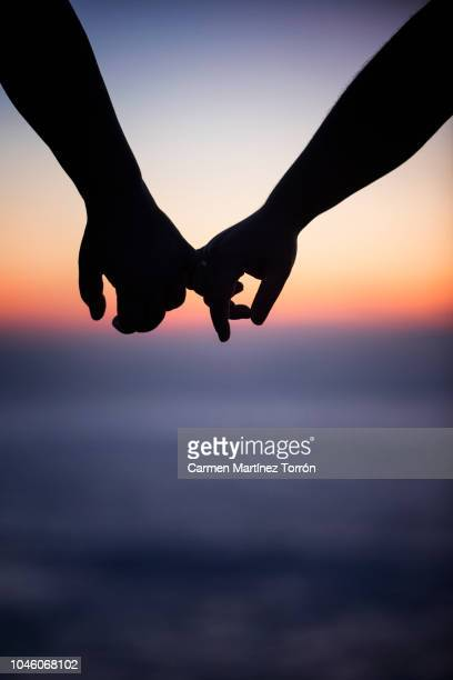couple hand in hand at sunset. - honeymoon stock pictures, royalty-free photos & images