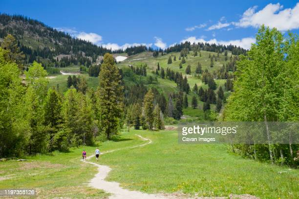 a couple hiking at jackson hole mountain resort in the summer - jackson hole stock pictures, royalty-free photos & images
