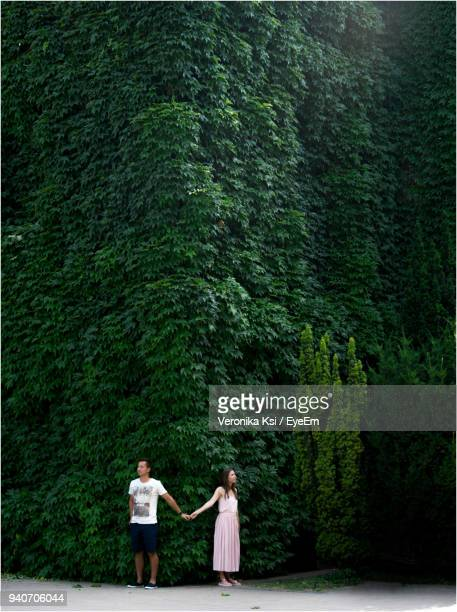 couple holding hands while standing against ivy - ksi stock photos and pictures