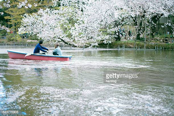 couple in a rowboat on a lake - cherry blossom in full bloom in tokyo stock pictures, royalty-free photos & images