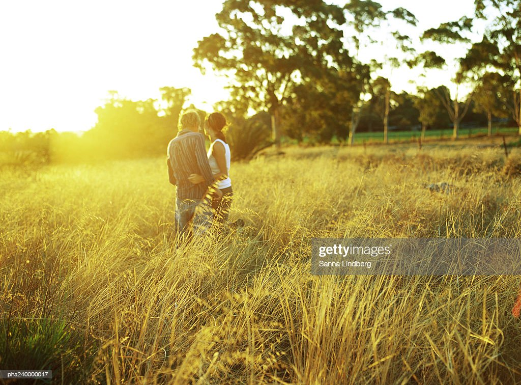 Couple in field of tall grass, rear view : Stockfoto