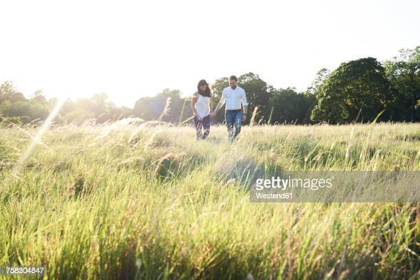 couple in love walking hand in hand on a meadow at sunset - camden london stock pictures, royalty-free photos & images