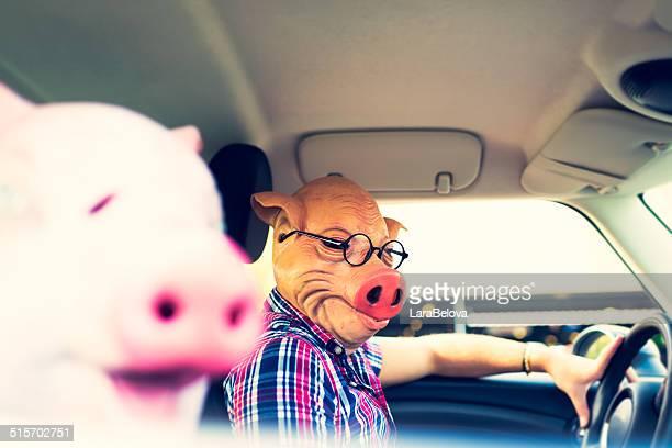 Paar in Maske von Schweinen im Auto