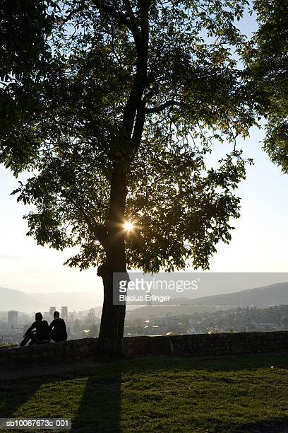 couple in park overlooking cityscape, rear view - blasius erlinger stock pictures, royalty-free photos & images