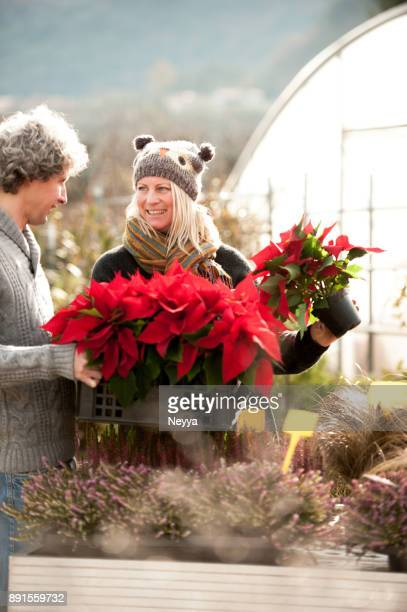 Couple in the Greenhouse at Christmas Time