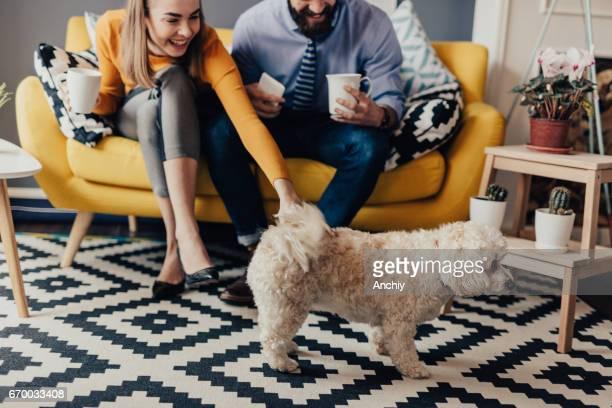 Couple appelle leur chien pour venir