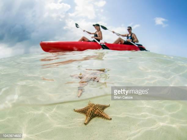 Couple kayaking on ocean at Starfish Beach, Grand Cayman, Cayman Islands