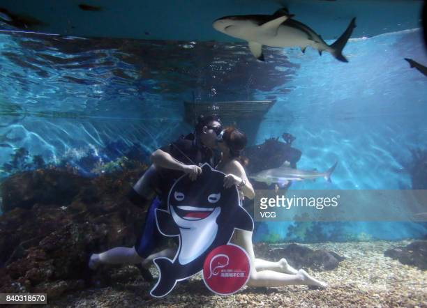 A couple kiss under water to greet the Chinese Valentine's Day at Haichang Polar Ocean park on August 28 2017 in Wuhan Hubei Province of China The...