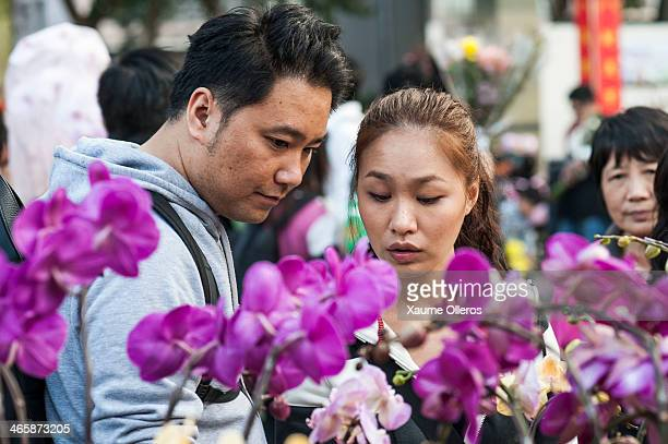 A couple look at a stand at the Flower Market set up for the Lunar New Year as China prepares for the Year of the Horse at Victoria Park on January...