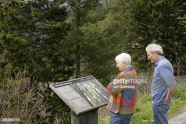 A couple looking at an information board at Newfound Gap