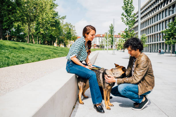 Couple looking at dog while crouching on road