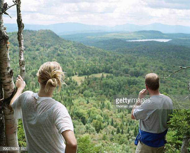 Couple looking at scenery, rear view