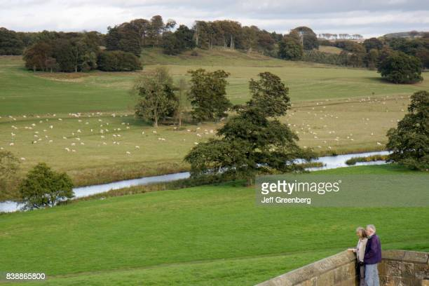 A couple looking at sheep grazing from Alnwick Castle