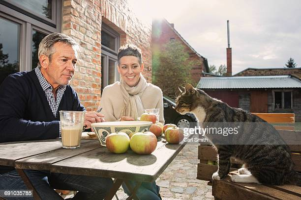 Couple looking at tabby cat while sitting in back yard