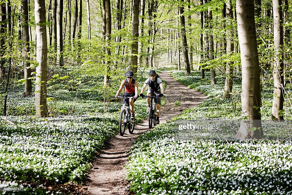 Couple mountain biking together : Stockfoto