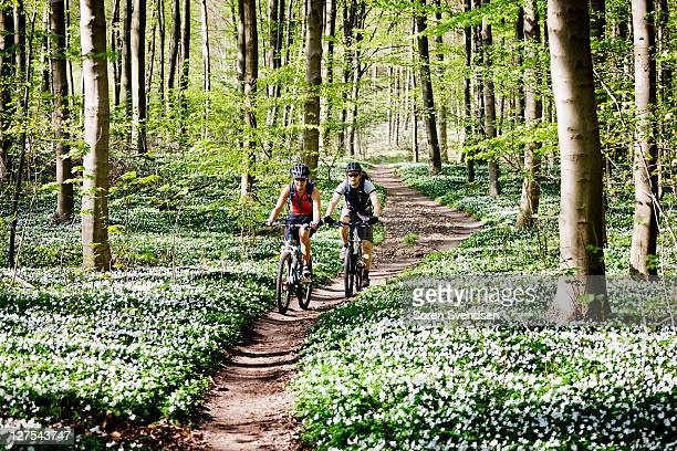 couple mountain biking together - nordic countries stock pictures, royalty-free photos & images