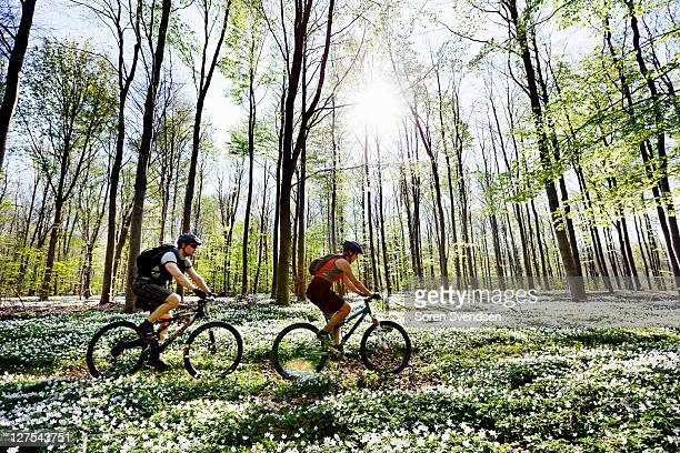 Couple mountain biking together