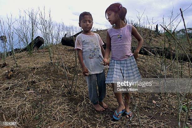 A couple of children stand at their fumigated coca plot August 30 2002 in La Hormiga hamlet Colombia Several farmers in the area have lost their coca...