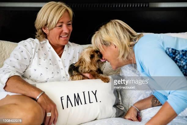 """pareja de mujeres lgbtq maduras posando en la cama con perro. - """"martine doucet"""" or martinedoucet fotografías e imágenes de stock"""