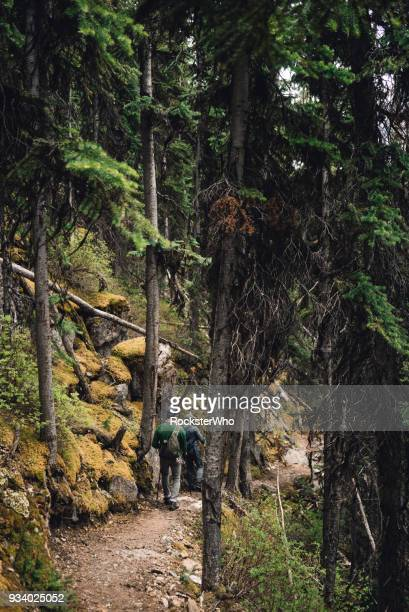 a couple of men on an adventure in the forest - who stock pictures, royalty-free photos & images