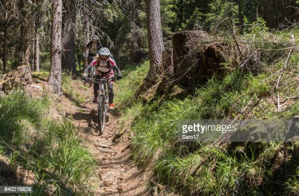 a couple of mountainbiker between trunks in the carinthian forests, austria. - between stock pictures, royalty-free photos & images