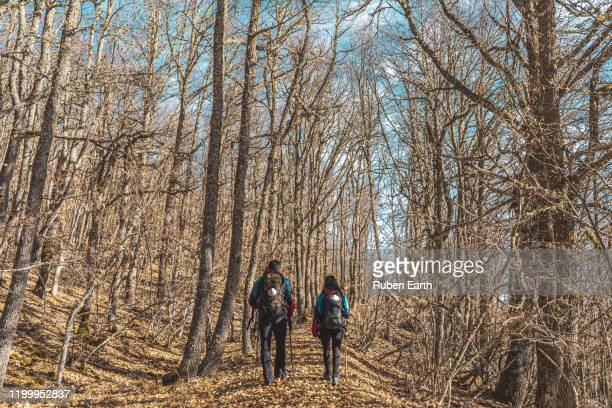 a couple of pilgrims on the forest on the way to santiago de compostela - pilgrimage stock pictures, royalty-free photos & images
