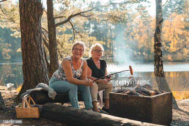 a couple of senior women on a picnic - weekend activities stock pictures, royalty-free photos & images