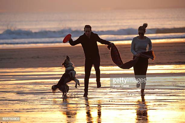 Couple on beach with dog at sunset