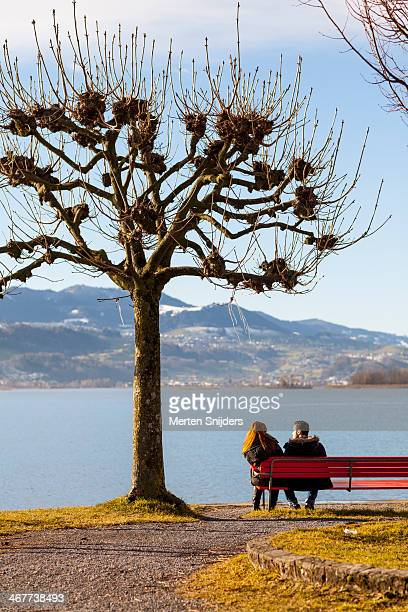 couple on bench in love - merten snijders stock pictures, royalty-free photos & images