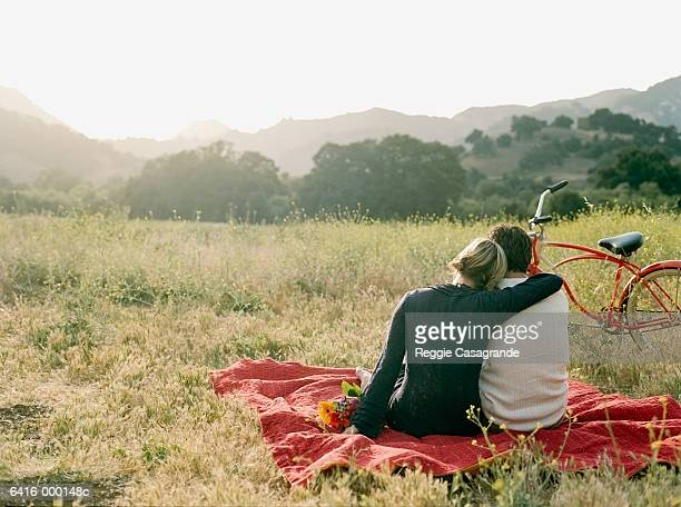 couple on picnic blanket - picnic stock pictures, royalty-free photos & images