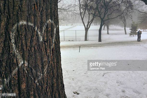 Couple pause in Brooklyn's Fort Greene Park in the fog on February 21, 2014 in New York City. After weeks of bitter cold weather and heavy snow, New...