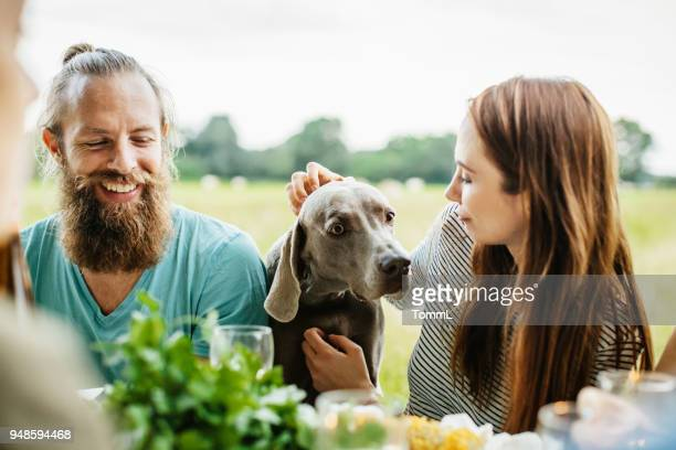 couple petting their dog while having lunch outdoors - thanksgiving dog stock pictures, royalty-free photos & images