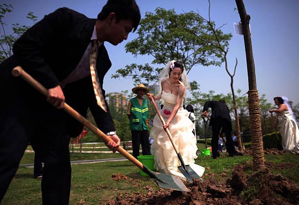 Photos Et Images De Low Carbon Themed Group Wedding Ceremony Getty