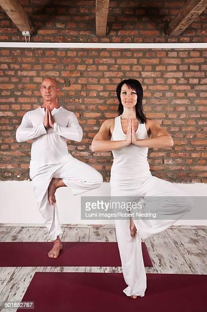 Couple Practicing Yoga, Tree Pose