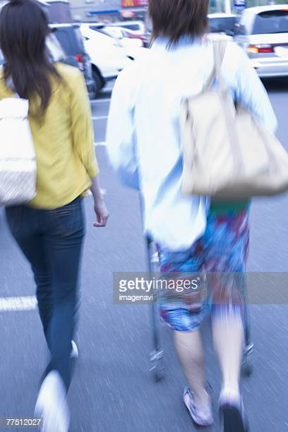 Couple Pushing a Shopping Cart,rear view