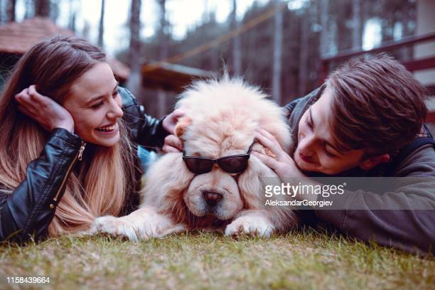 couple putting glasses on a cute puppy - chow dog stock pictures, royalty-free photos & images