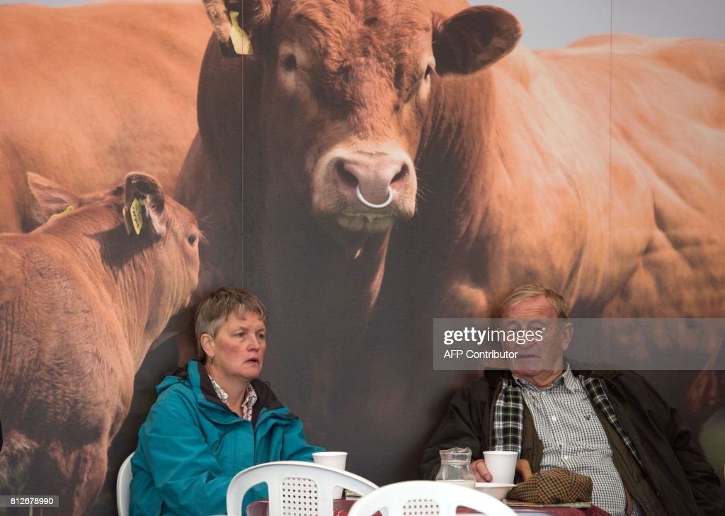A couple relax in a cafe in front of a large poster of an image of cattle on the first day of the Great Yorkshire Show near Harrogate in northern England on July 11, 2017. The agricultural show, which was first held in 1838, showcases all aspects of country life. Organised by the Yorkshire Agricultural Society (YAS), it is held each July and attracts around 130,000 visitors over the three days. / AFP PHOTO / Oli SCARFF