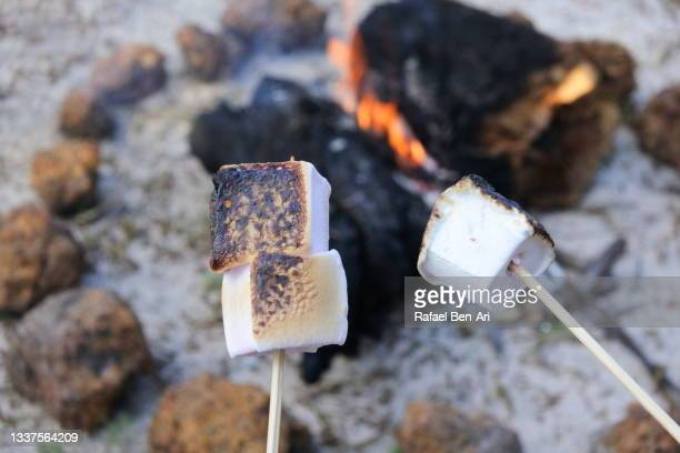 couple roasting marshmallow in campfire - rafael ben ari - fotografias e filmes do acervo
