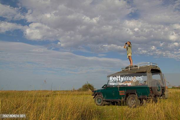 couple search field with binoculars from off-road vehicle - moremi wildlife reserve stock photos and pictures