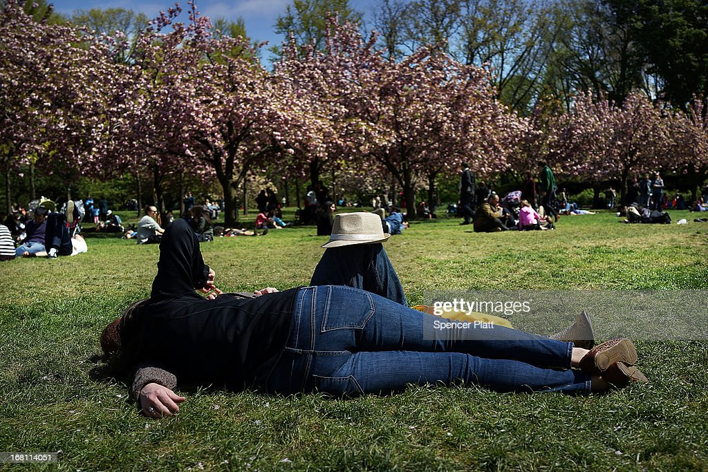 A couple sits under cherry blossom trees at the Brooklyn Botanical Garden on May 5, 2013 in New York City. The botanical garden, which sits on 52-acres, features numerous gardens and a conservatory. The Brooklyn Botanical Garden is famous for their cherry blossoms, which typically bloom at the end of April and are a centerpiece of the Garden's annual cherry blossom festival which attracts thousands of visitors.