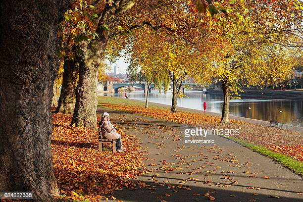 couple sitting on bench surrounded by orange leaves during autumn. - nottingham stock photos and pictures
