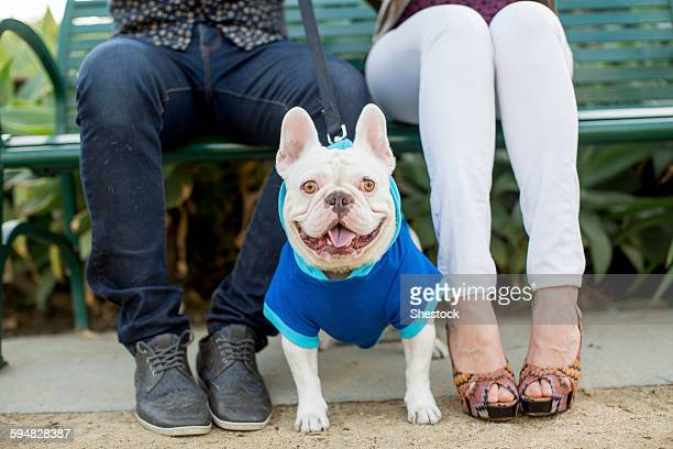 couple sitting on bench with dog - americas next top dog stock pictures, royalty-free photos & images