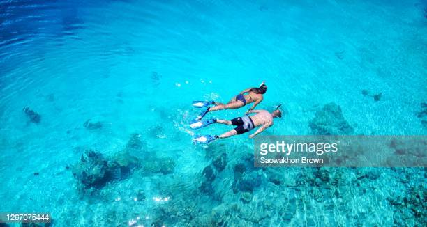 couple snorkeling in sea, maldives - underwater diving stock pictures, royalty-free photos & images